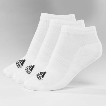 adidas Performance Chaussettes 3-Stripes No Show blanc