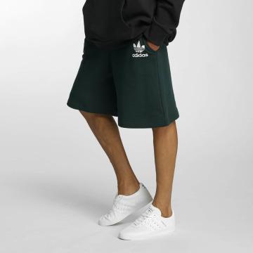 adidas Shorts ADC F grün