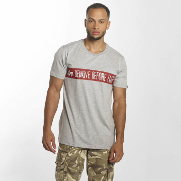 Alpha Industries T-Shirt RBF grau