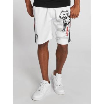 Amstaff Pantalón cortos Gerro blanco