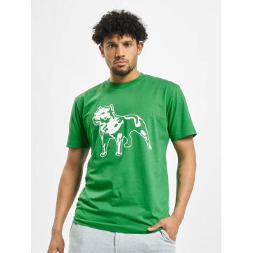 Amstaff T-Shirty Logo zielony