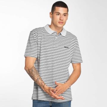 Bench Poloskjorter Y/D Stripe grå