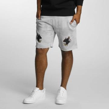 Cayler & Sons Shorts FD grigio