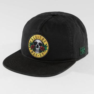 Cayler & Sons snapback cap WL Budz N' Skullz Old zwart