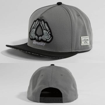 Cayler & Sons Snapback Caps Broompton grå
