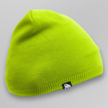 Dangerous DNGRS Beanie Plain Colour grün