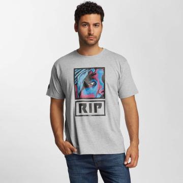 Dangerous DNGRS T-Shirt Twopack gray
