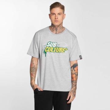 Dangerous DNGRS T-Shirt Subculture grey