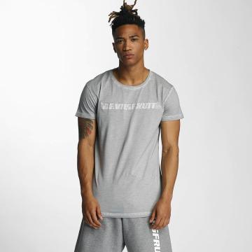 Devilsfruit T-shirt Holla grå