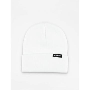 Dickies шляпа Alaska белый