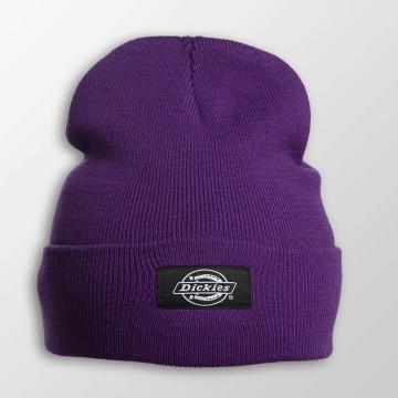 Dickies Beanie Yonkers violet