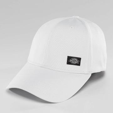 Dickies Flexfitted Cap Morrilton bílý