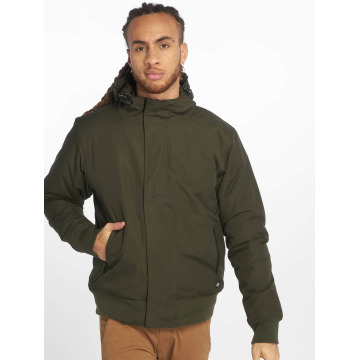 Dickies Giacca invernale Cornwell oliva