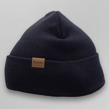 Dickies Hat-1 Alaska blue