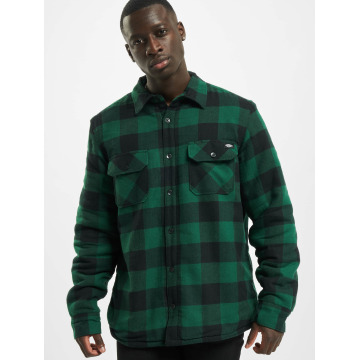 Dickies Shirt Lansdale green