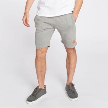 Dickies shorts Maysville grijs