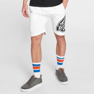 Dickies shorts Roxton wit