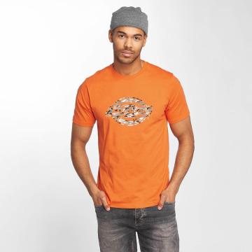 Dickies T-Shirt HS One Color orange