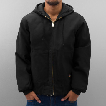 Dickies Winter Jacket Rigid Duck Hooded black