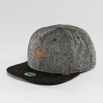 Djinns Snapback Caps Spotted Gum harmaa