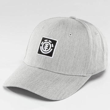 Element Snapback Cap Classic Treelogo grey