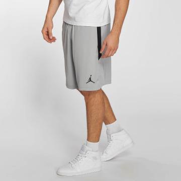 Jordan Pantalón cortos Dri-FIT 23 gris