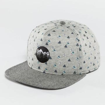 Just Rhyse snapback cap Happy Trees grijs