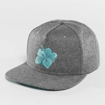 Just Rhyse snapback cap Hawaiian grijs