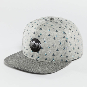 Just Rhyse Snapback Caps Happy Trees grå