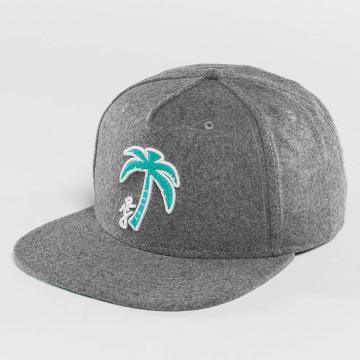 Just Rhyse Snapback Caps Palm Desert grå
