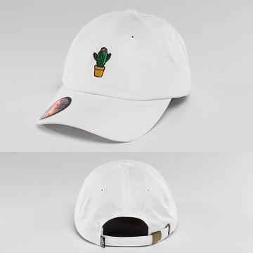 Just Rhyse Snapback Caps Cactus hvid