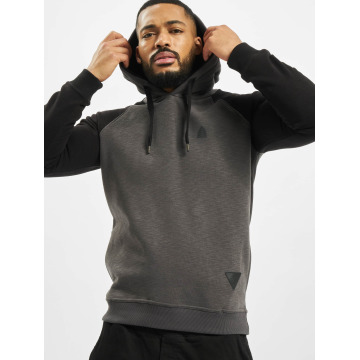 Just Rhyse Sweat capuche Freeco Raglan II gris