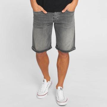 Kaporal Shorts Blaire grigio