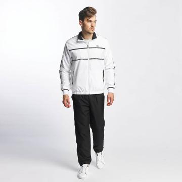 Lacoste Classic Joggingsæt Stripes hvid