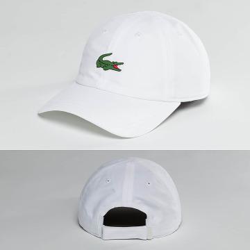 Lacoste Classic Snapback Caps Logo valkoinen
