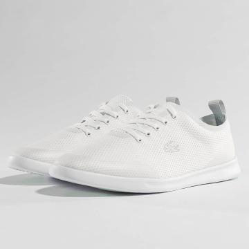 Lacoste Sneakers Avenir hvid