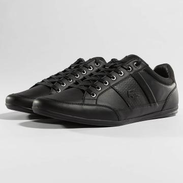 Lacoste Sneakers Chaymon sort