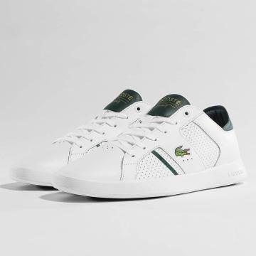 Lacoste Sneakers Novas CT white