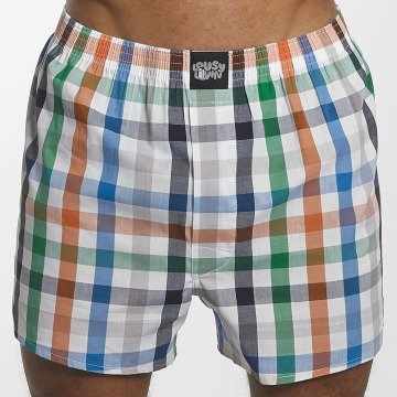 Lousy Livin Boxer Short Lousy Check colored