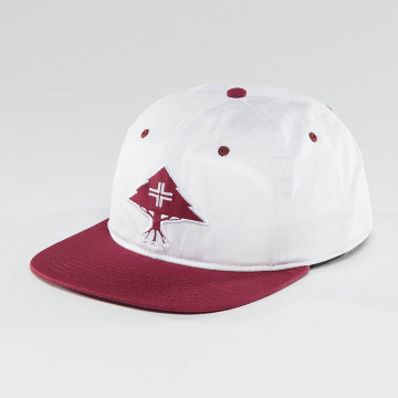 LRG Casquette Snapback & Strapback Treesearch rouge