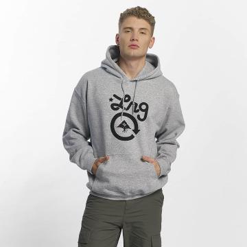 LRG Felpa con cappuccio Cycle Logo grigio