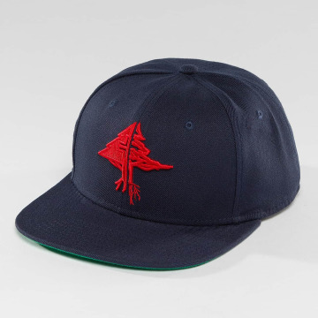 LRG Snapback Cap Collection blau