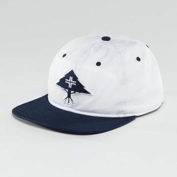 LRG snapback cap Treesearch blauw