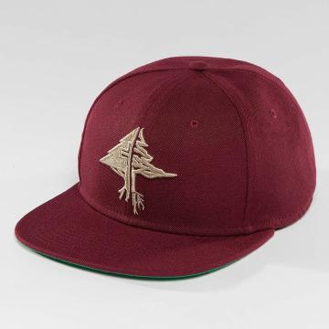 LRG Snapbackkeps Collection röd