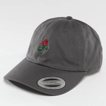 Mister Tee Snapback Caps Rose Dad grå