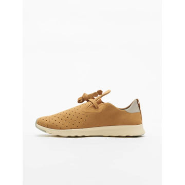 Native Sneakers Apollo Moc beige