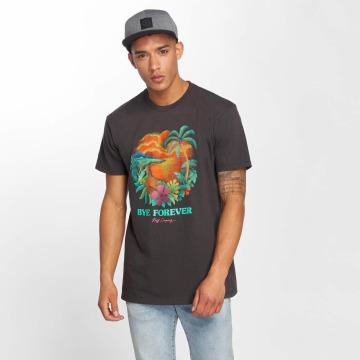NEFF T-shirt Bye Forever grigio