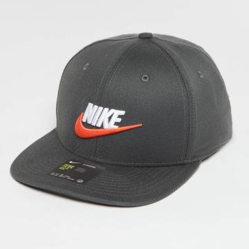 Nike Flexfitted-lippikset Swflx CLC99 harmaa