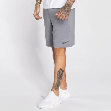 Nike Performance Shortsit Dry Training harmaa