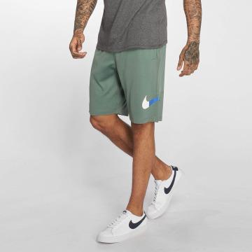 Nike SB Shorts Dry grün